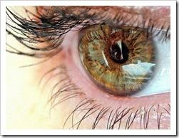 7лечение демодекоза глаз